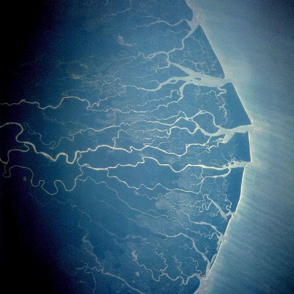 Delta do Niger