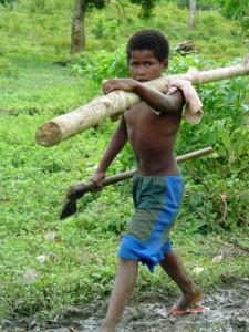 trabalho_infantil3-campo