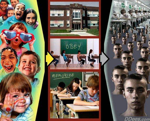 educação estudantes