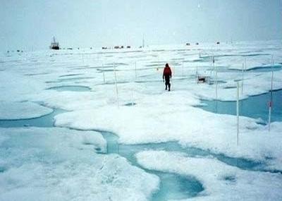 Circo Polar Ártico Derretido