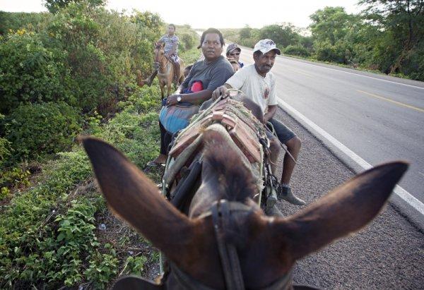 Josafá Pereira dos Santos e sua família voltando depois de um dia de trabalho Mirandiba-Pernambuco Foto Alexandre Mazzo