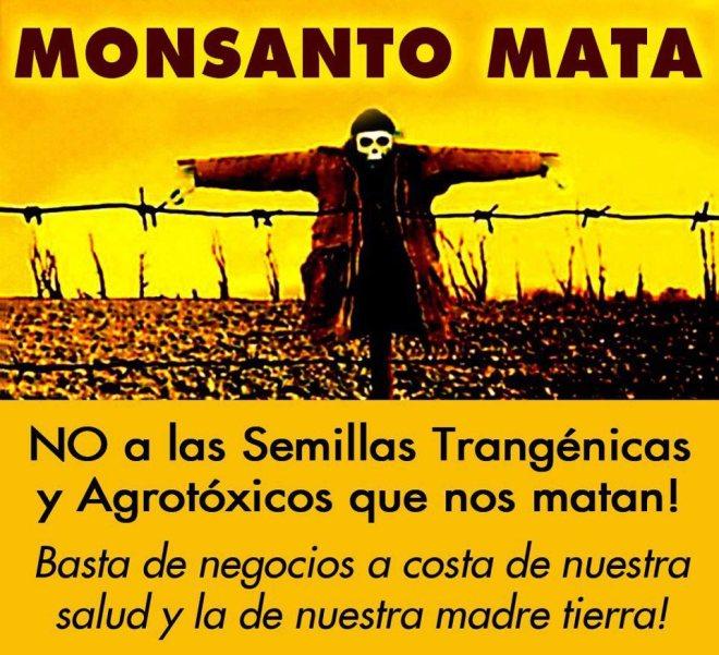 Monsanto agro tóxico