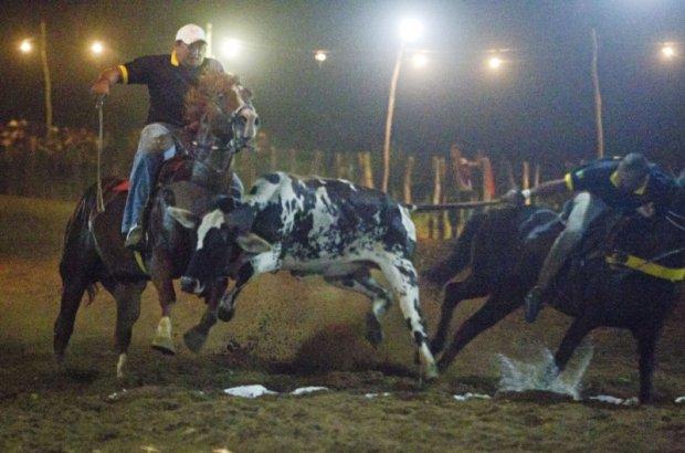 Prova de vaquejada em Cabrobó no sertão do estado de Pernambuco Alexandre Mazzo