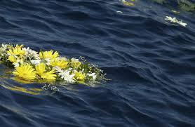 Lampedusa flores