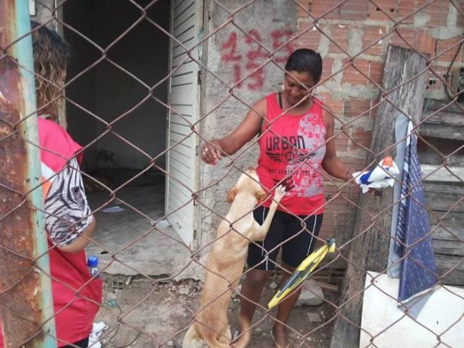 A cadela shaeny brinca com d. Maria Catarina que terá sua casa demolida amanhã pela Prefeitura. Uma história a menos no drama dos Coelhos