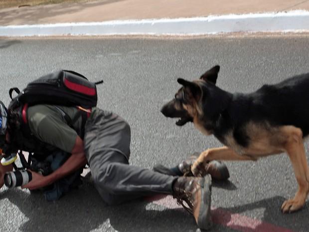 Depois de afastar os manifestantes próximo ao Estádio Nacional de Brasilia, policiais com cães agrediram dois fotógrafos: O da Folha, Fábio Braga (foto), e o fotógrafo Ueslei Marcelino (Foto André Coelho: Agência O Globo)
