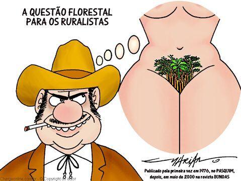 questão florestal