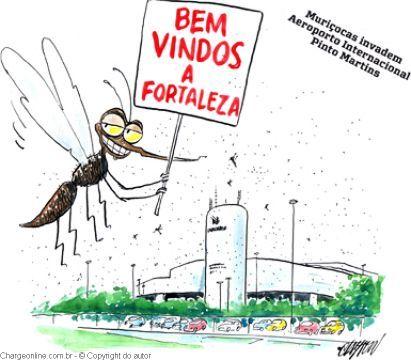 clayton dengue
