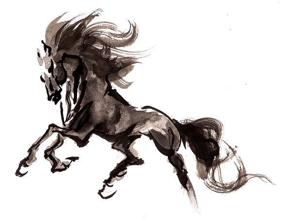tropel cavalo