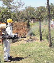 En 2013, en la Argentina se reportaron sólo 2718 casos de dengue, ninguno mortal