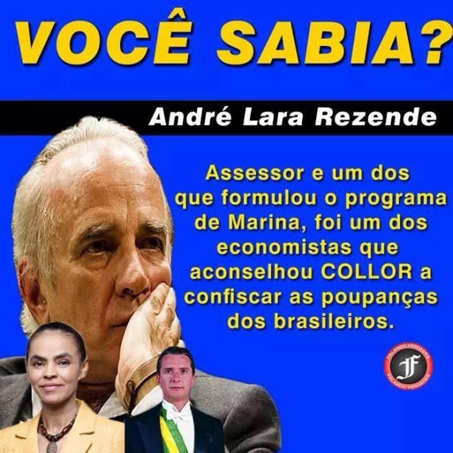 Maria Lara Collor economia