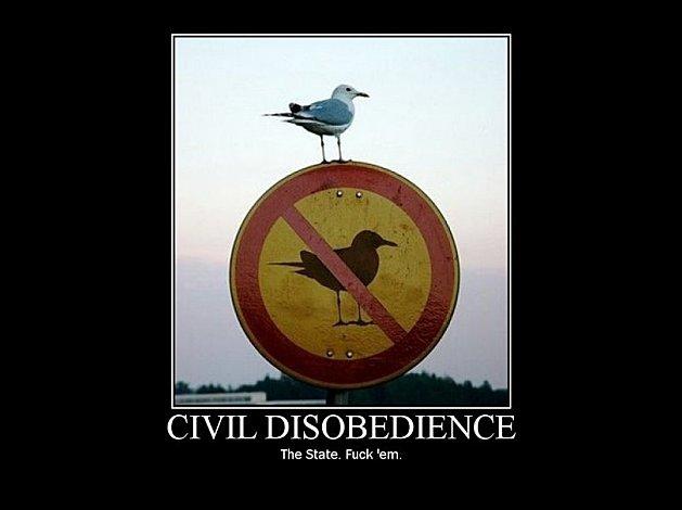 civil desobediência indignados