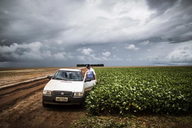 Brasil, Campo Novo do Parecis, estado de Mato Grosso - Plantações de soja - produtor de soja num campo onde houve uma demonstração da TMG sobre o seu programa de melhoramento genético de soja NELSON GARRIDO