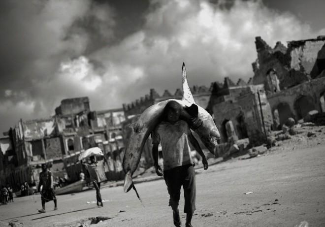 7/7SOMALIA IN TRANSITION - JAN GRARUPUn hombre lleva un tiburón sobre los hombros en el mercado de pescado de Mogadiscio. La foto es del reportaje 'Somalia en transición', de  Jam Grarup (© Jan Grarup - Courtesy FotoEvidence) Ver más en: http://www.20minutos.es/fotos/artes/premio-fotoevidence-2015-11201/?imagen=1#xtor=AD-15&xts=467263