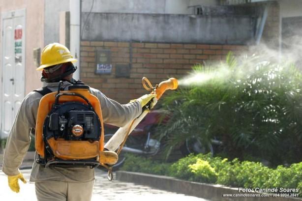 combate-a-dengue