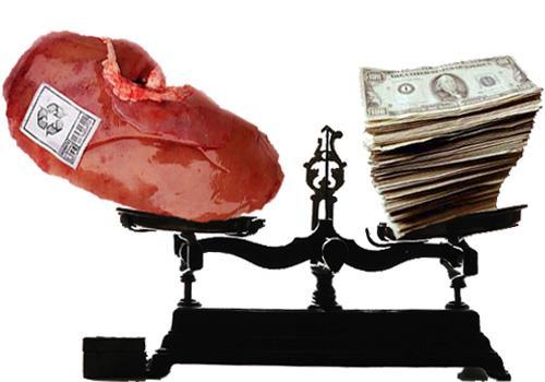 tráfico de órgãos 4