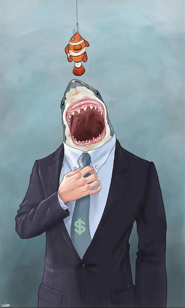 Todo tubarão tem a proteção do SPC